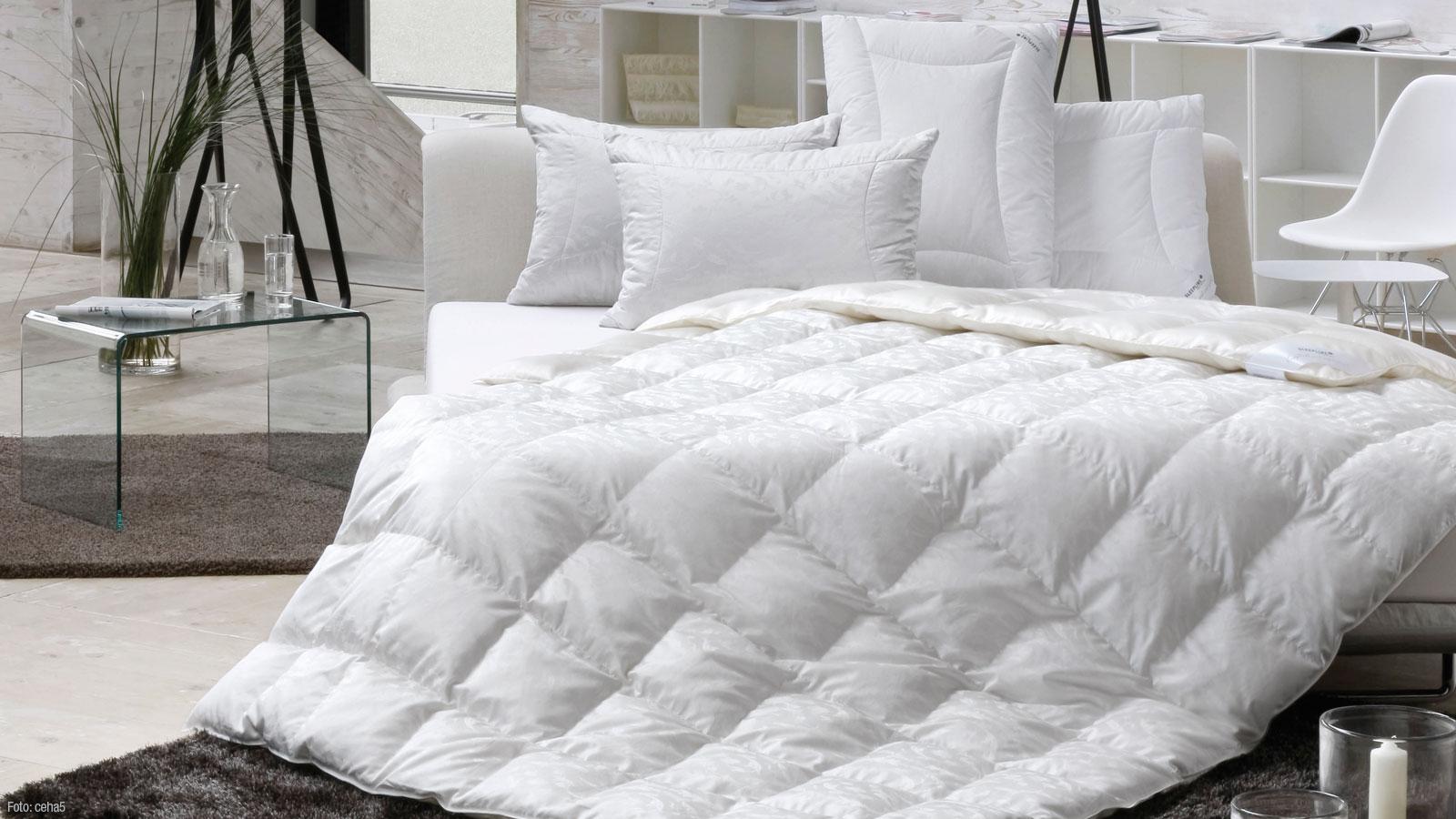 interessengemeinschaft richtig liegen und schlafen. Black Bedroom Furniture Sets. Home Design Ideas